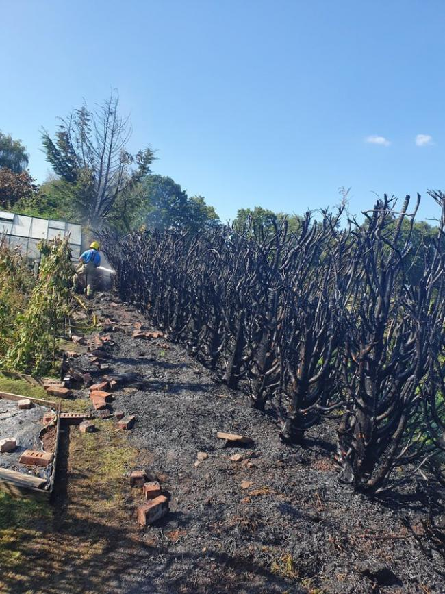A woman was seriously injured after a fire spread to a hedge row. Photo: @HWFireTenbury