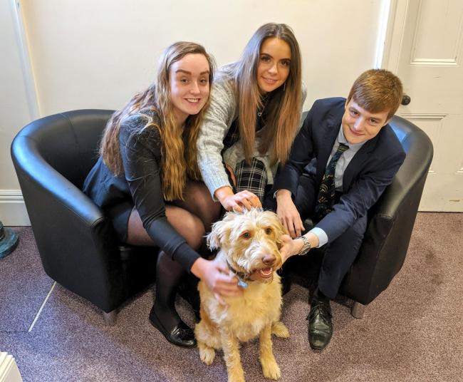 Fern the Holy Trinity School dog with students Amber Harrison, Harriet Mole, and Oliver Bryant