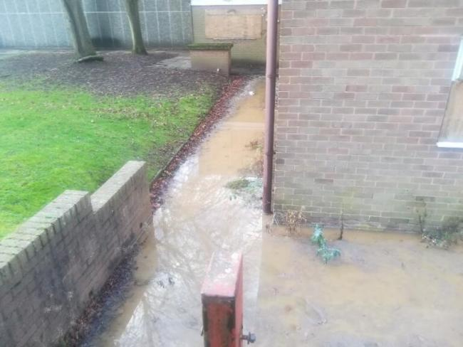 The sewage behind homes on Burcot Lane, near the former Bromsgrove council buildings.