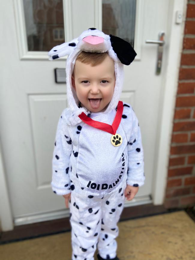 Miller age 2 being a 101 Dalmatian for world book day 2020