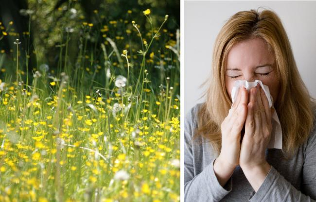 How to tell the difference between symptoms of hay fever and coronavirus. Picture: Newsquest