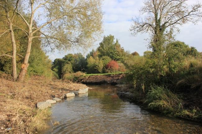 Eniviromental improvements have been made on the River Cole.