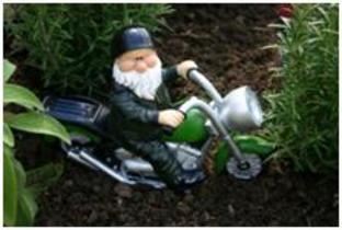 Woodland Wilf Born to be Wild RRP £19.99.