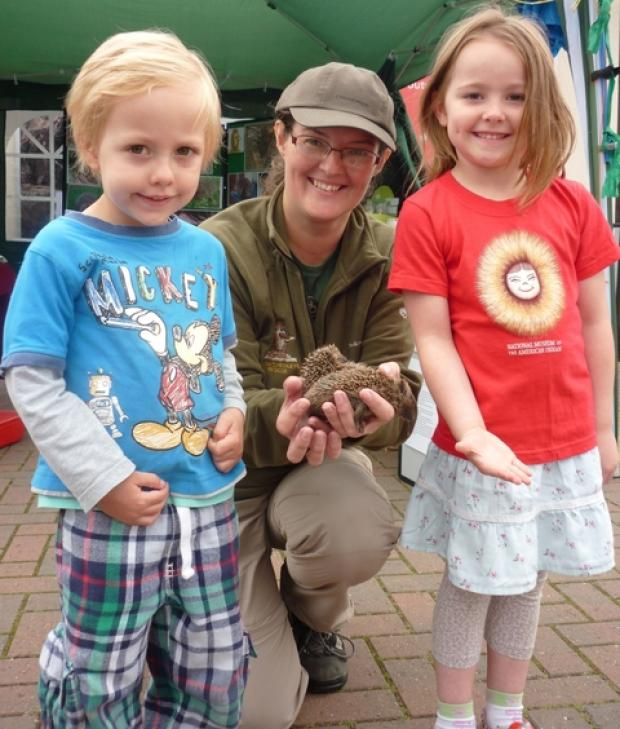 Jayne Lawrence shows Elliot Gray and Isabella Gray the baby hedgehogs at Webbs garden centre.
