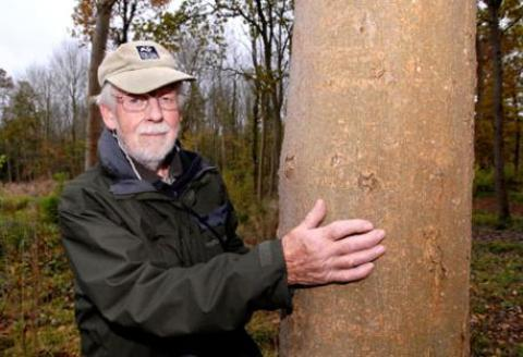 WOODLAND WOE: Worcestershire Wildlife Trust officer Harry Green