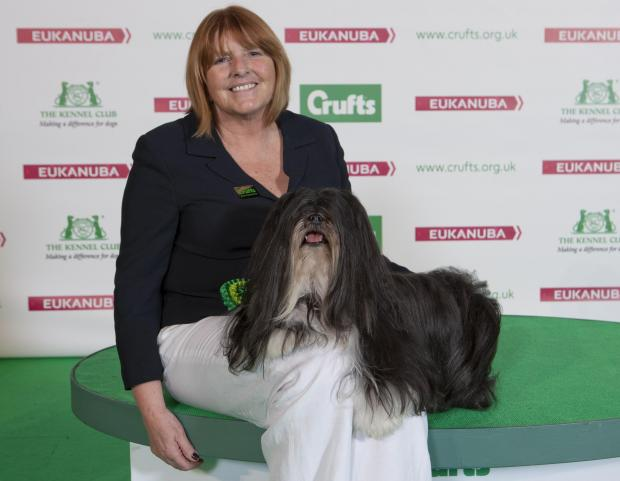 TOP DOG: Blackwell owner Wendy Cain with Martha, the five-year-old Lhasa Apso that scooped a top prize at Crufts. SP