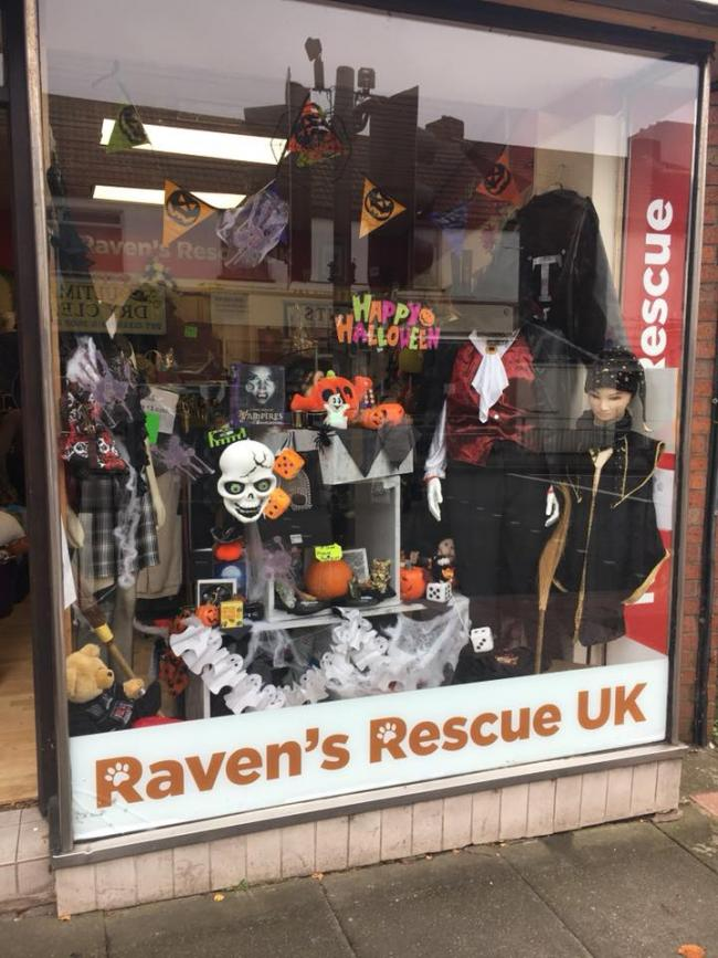 Halloween Shop Displays.Halloween Bargains On Offer At Raven S Rescue Uk S Sedgley Charity