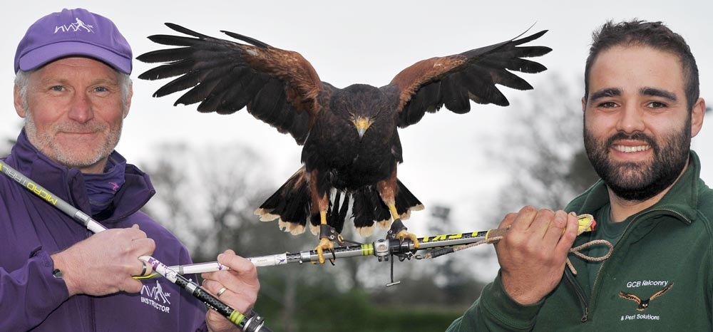 Ian Northcott and Gino Belmonte with Nut the harris hawk
