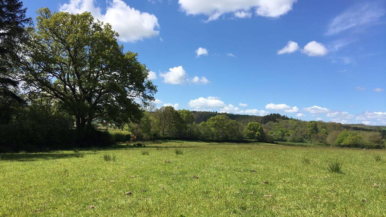 TRAVEL: Countryside retreat in Chulmleigh
